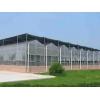 一流的农业温室建设山东提供  :哪里有农业温室建设