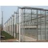 山东精湛的玻璃智能温室,智能温室造价