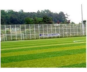 西安人造草坪公司_人造草坪_足球场人造草坪铺设