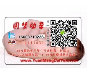 武汉新星中心有限公司