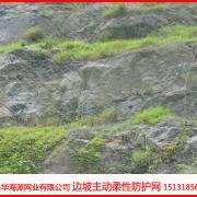 喷播植草绿化护坡网15131856266生态保护绿化护坡网