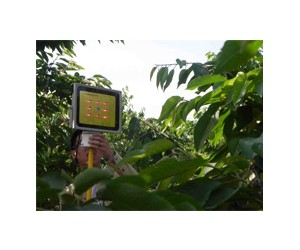 为什么要用LED植物生长灯